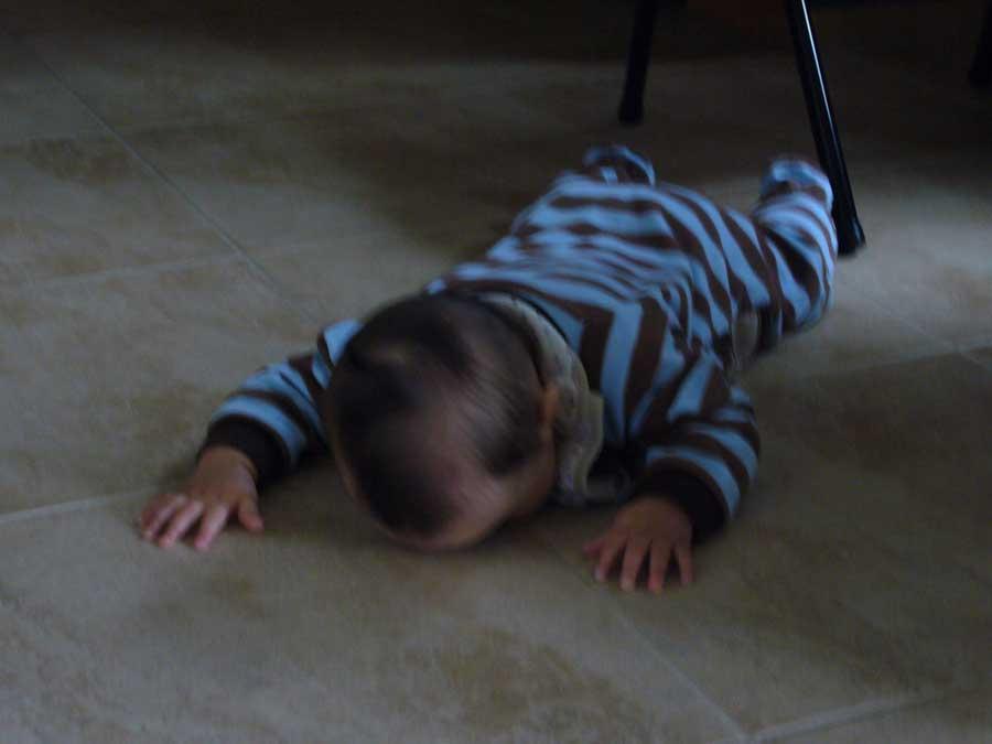 Lick the floor