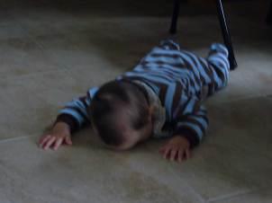 licking floor